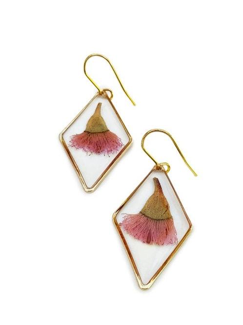 Pink Flowering Gum Earrings ○ Dainty Diamond
