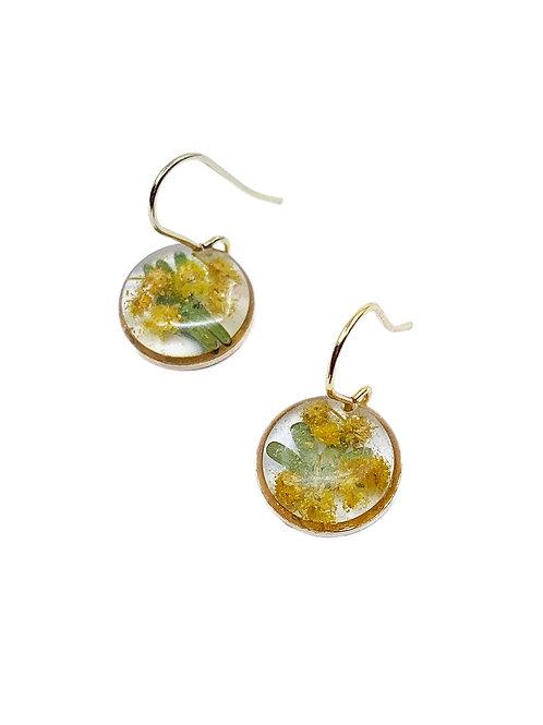 Wattle Earrings ○ Dainty Circle