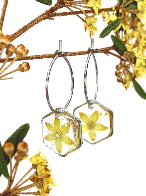 Forest Phebalium Flower Hexagon Hoop Earrings