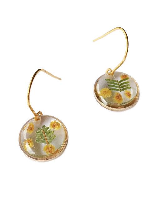 Wattle Circle Earrings