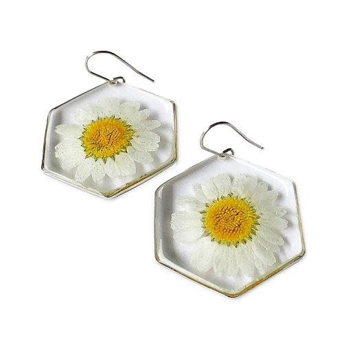 Daisy Earrings ○ Hexagon