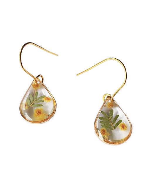 Wattle Teardrop Earrings