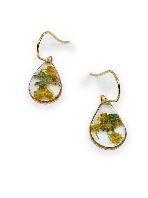Wattle Earrings ○ Dainty Teardrop