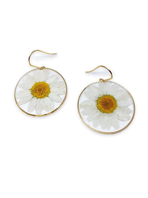 Daisy Earrings ○ Circle