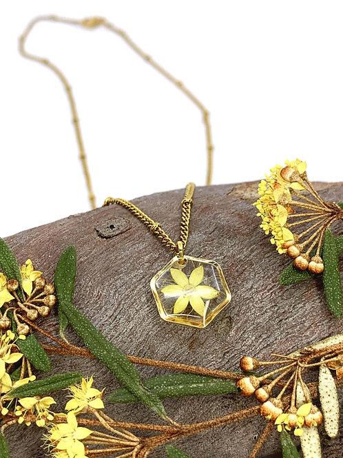Forest Phebalium Flower Hexagon Necklace