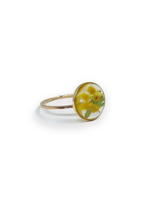 Wattle Ring ○ Dainty Circle