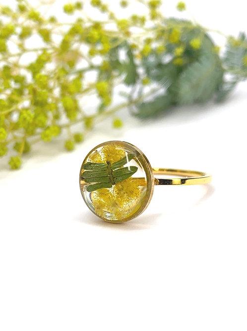 Wattle Circle Ring