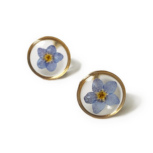Blue Forget-Me-Not Studs ○ Dainty Circle