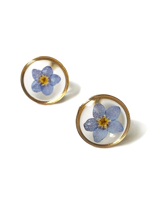 Blue Forget-Me-Not Circle Studs