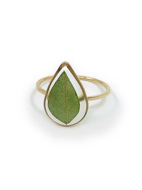 Eucalyptus Ring ○ Dainty Teardrop
