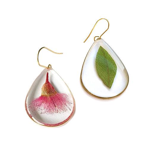 Eucalyptus Leaf & Pink Flowering Gum Earrings ○ Teardrop