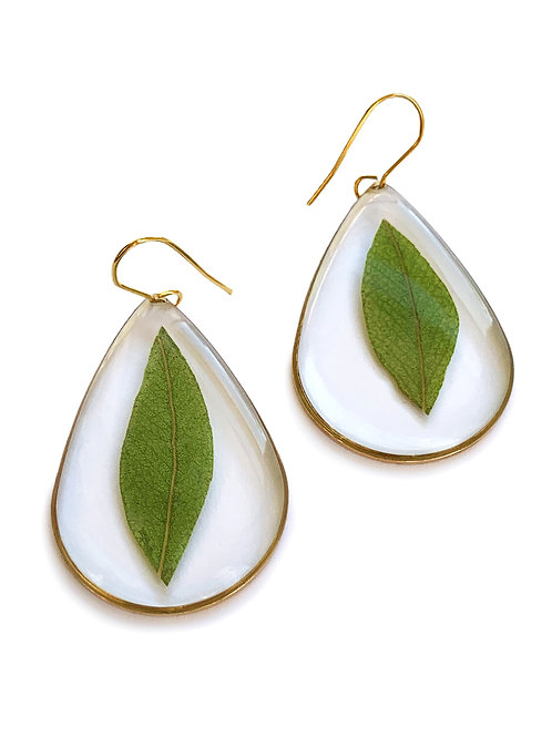 Eucalyptus Leaf Earrings ○ Teardrop