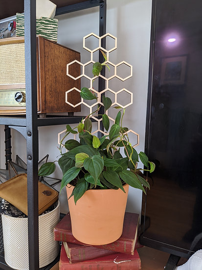 MNP Honeycomb Trellis