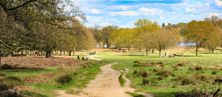 Fancy some fresh air in The Royal Parks?