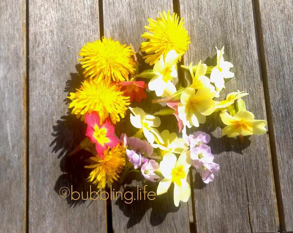 Handfuls of dandelion, primrose and lady's smock flowers