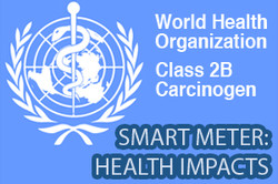 Stop Smart Meters World Health Organisation
