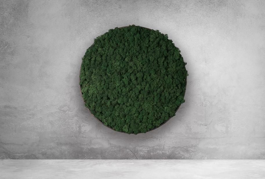 Islandmoos-Design dunkelgrün