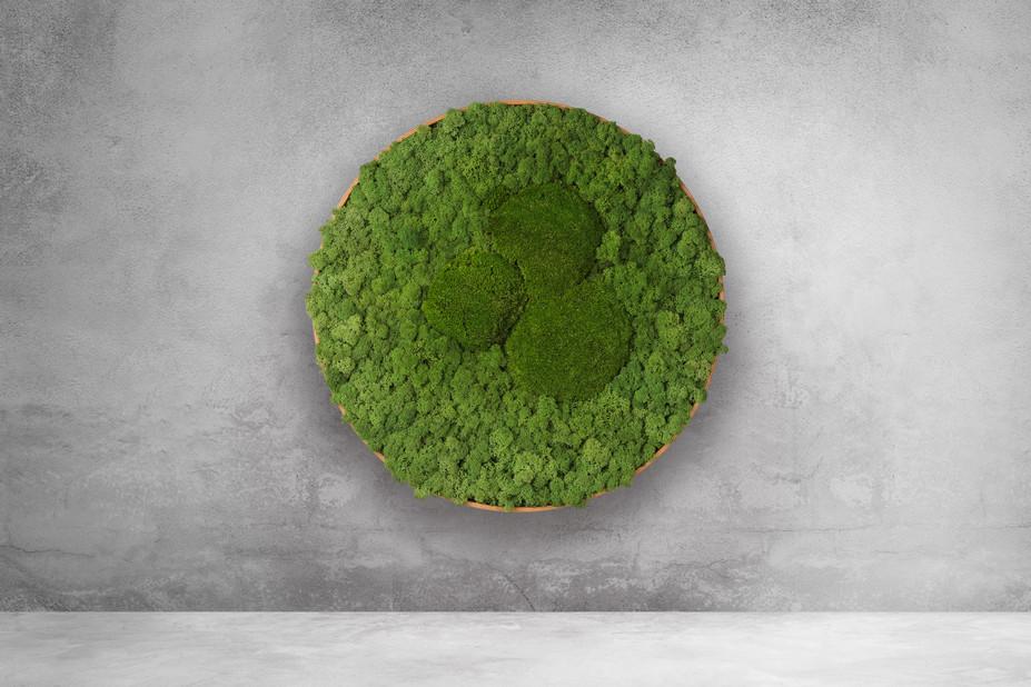 Islandballen-Design