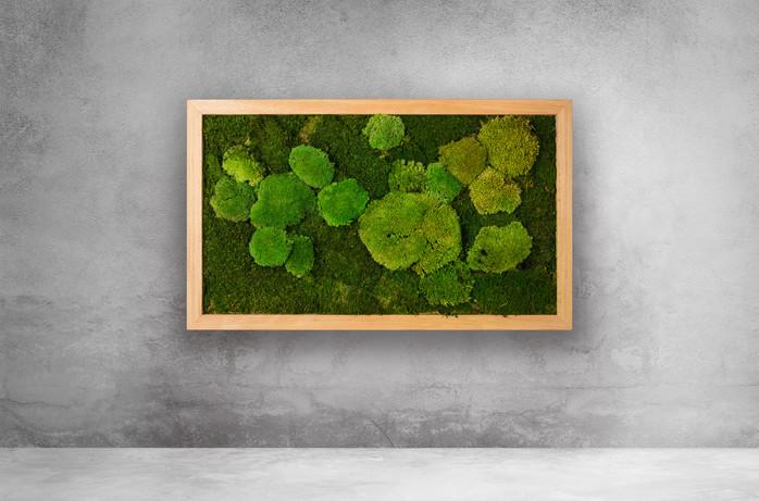 Naturmoos-Design