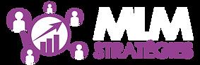 Logo_MLM_Stratégies-03_336-110-px_Plan_d