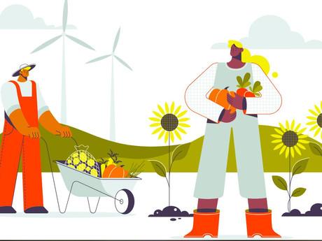 3 Steps Towards a Greener Future