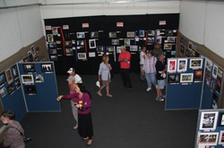 photography section