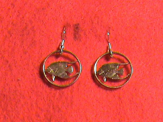 Bermuda nickel gold plated earrings