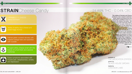 GHG's Cheese Candy Featured in Left Coast Canna Review Magazine