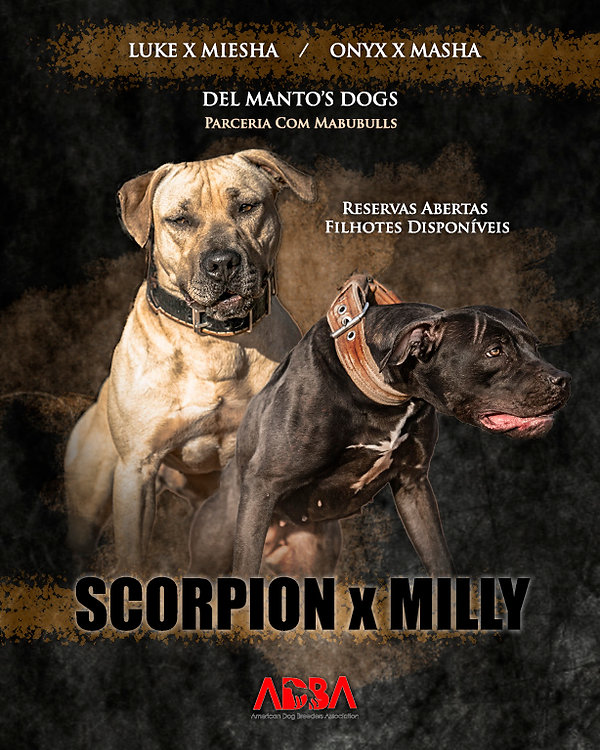 scorpionxmilly.jpg