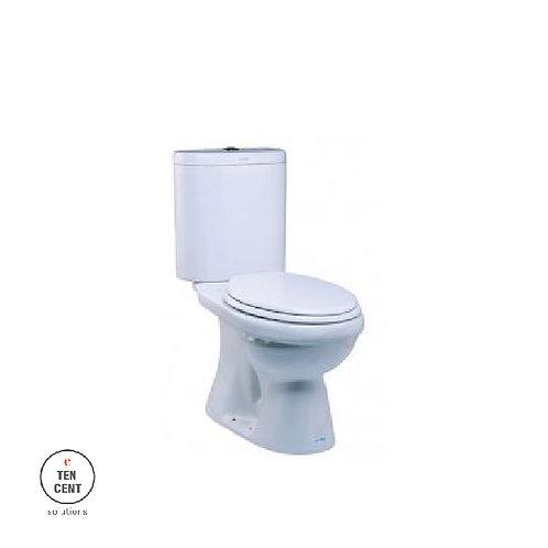 Sericite_WC 1009 _LC 5019 MICA Andesite WC Suite