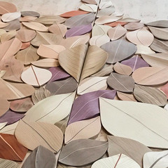 Leaves of Wood