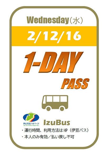 1DAY PASS IZUBUS