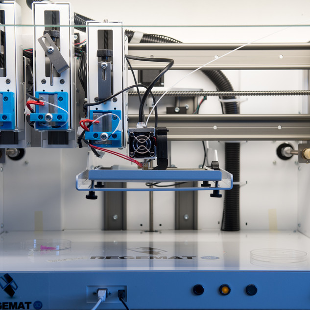 "Customized REGEMAT3D ""Reggie"" Bioprinter"