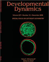 Cover Dev Dyn 1.png