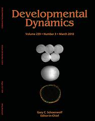 Cover Dev Dyn 2.png