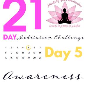 Day 5 - Awareness 21 Day Meditation Challenge
