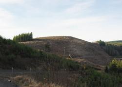 Logged hill