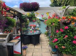 Courtyard Garden Winner 2020