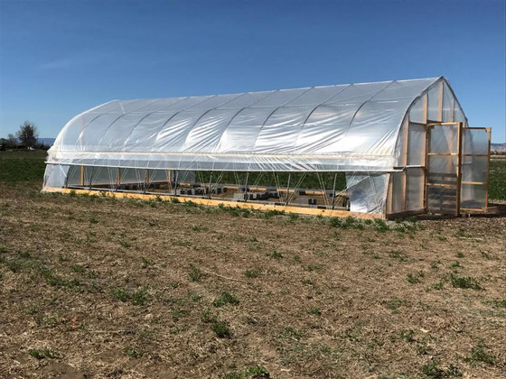 Prepping the High Tunnel for the 2017 Vegetable Starts
