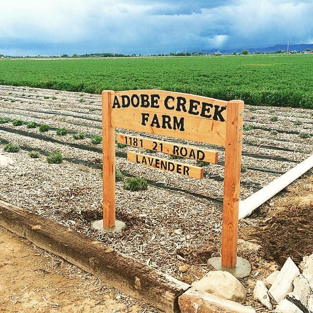 Adobe Creek Farm
