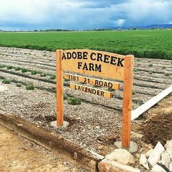 Adobe Creek Farm
