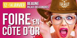 FOIRE DE BEAUNE (1)