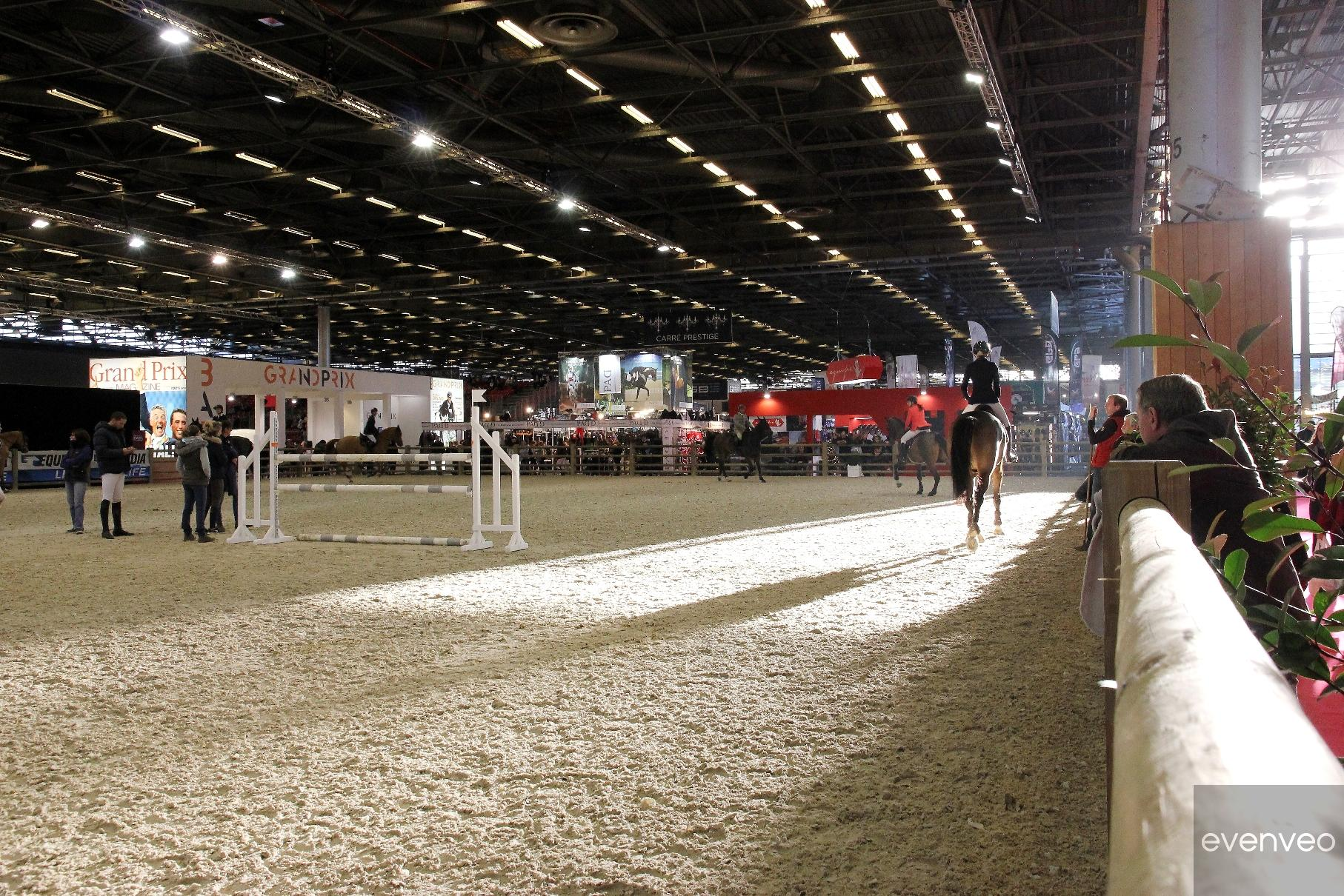 SALAO_DO_CAVALO_DE_PARIS_2016 (80)