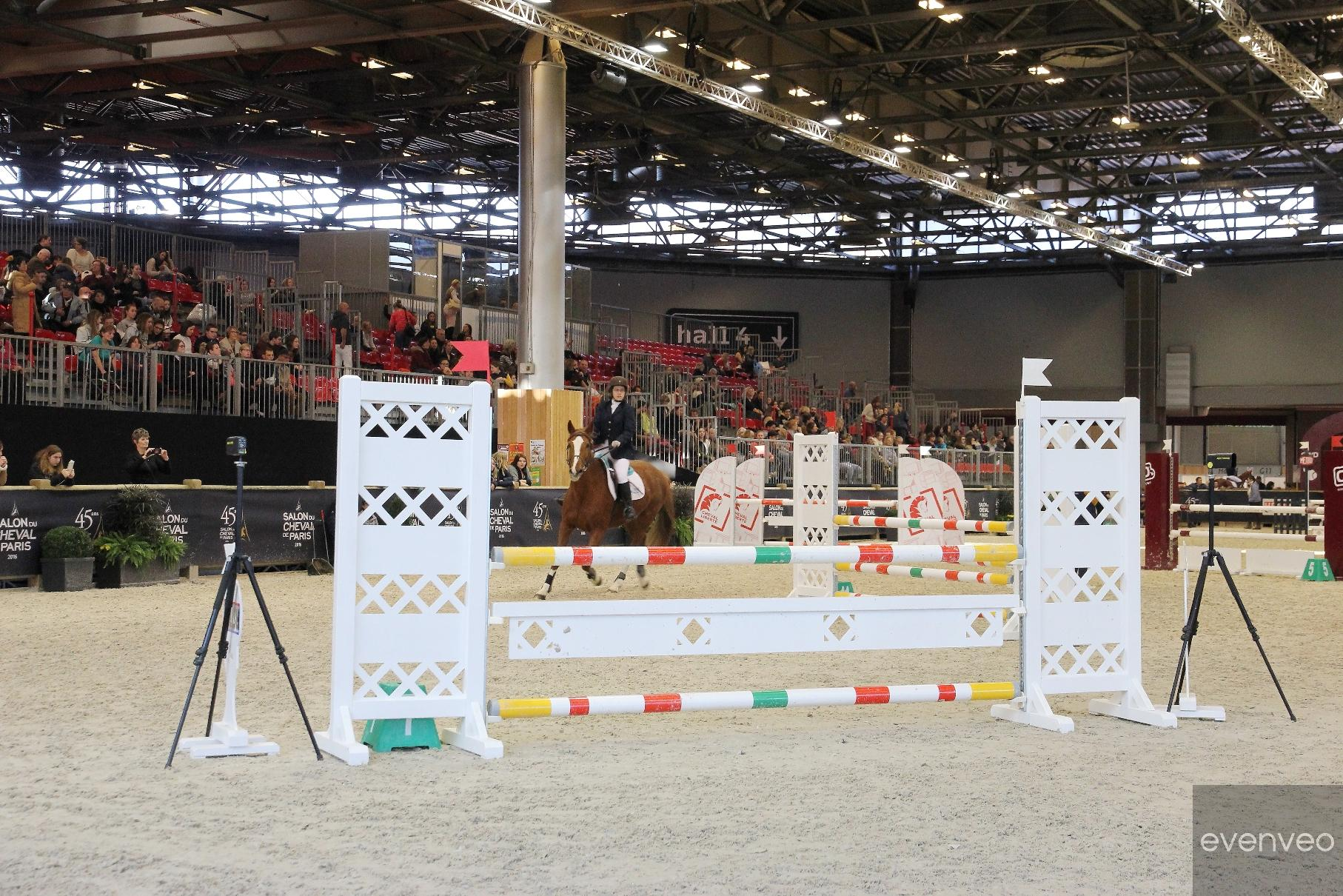 SALAO_DO_CAVALO_DE_PARIS_2016 (69)
