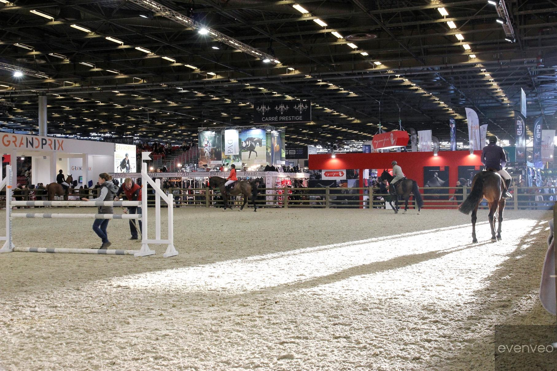 SALAO_DO_CAVALO_DE_PARIS_2016 (79)