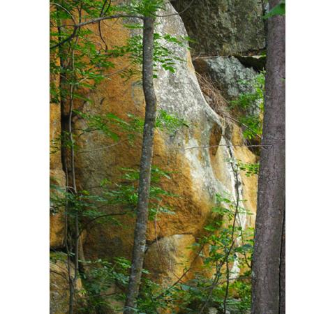Si vous voulez profiter des sources chaudes dans les Pyrénées Orientales ce message est peut-être pour vous . Séjour ponctué de temps immobiles , silencieux et palpitants dans nos marches en montagne ,au rythme de chacun . Mots-clé : espace,sourire, fleurs, minéral, éléments, guérison, partage, accueil .