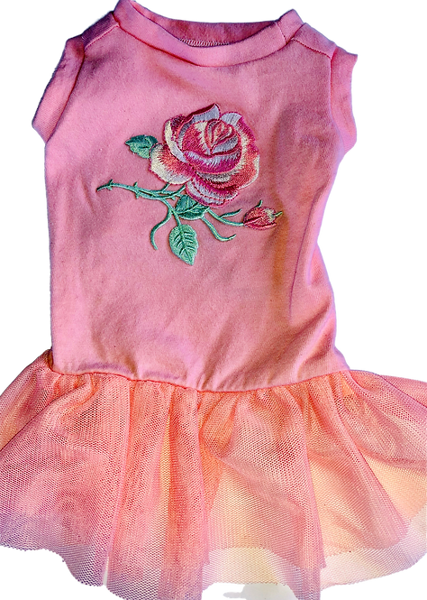 X-Small-T-shirt dress for the feminine pup.