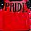 Thumbnail: Medium- LGBTQ+  Pride dog Shirt- handmade- available in medium only