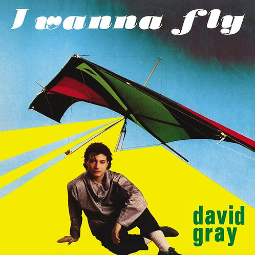 David Gray ‎– I Wanna Fly