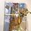 Thumbnail: bag and notebook set